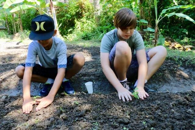 Jiwa Damai Organic Garden & Retreat Center