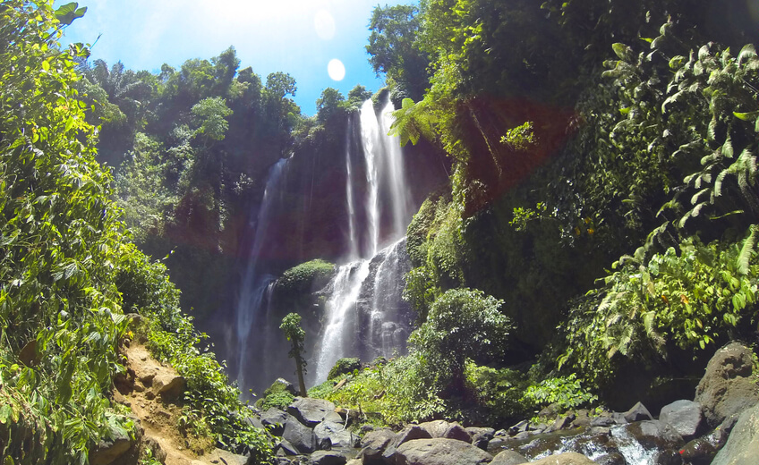 1 Day North Bali Appreciation - Sunrise, Trek & Secret Waterfall