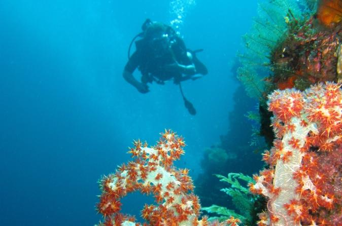 3-Day PADI Open Water Scuba Diving Certification Course in Bali