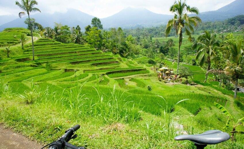Off the beaten track Mountain Bike From Bedugul to Jatiluwih