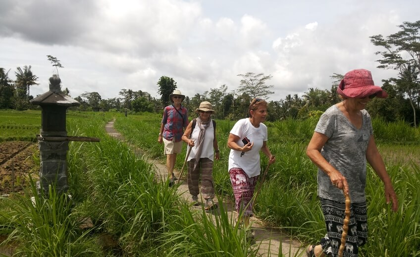 Walking Tour in Ubud