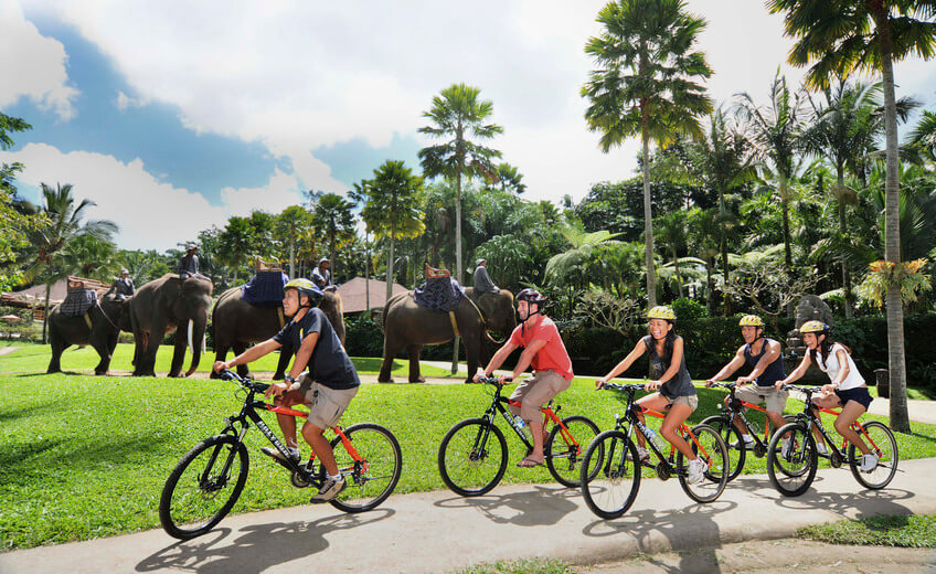 Mountain Cycling and Elephant Park