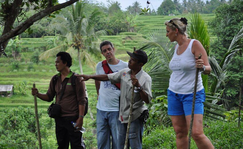 Bali Rice-fields Hiking