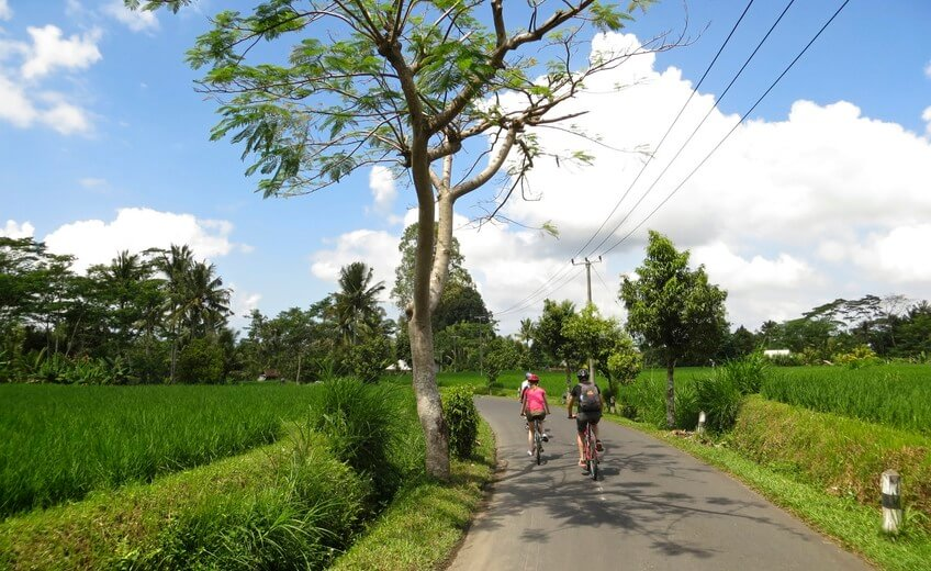 Fascinating Downhill Cycling Tour from Mount Batur (From South Bali Area)