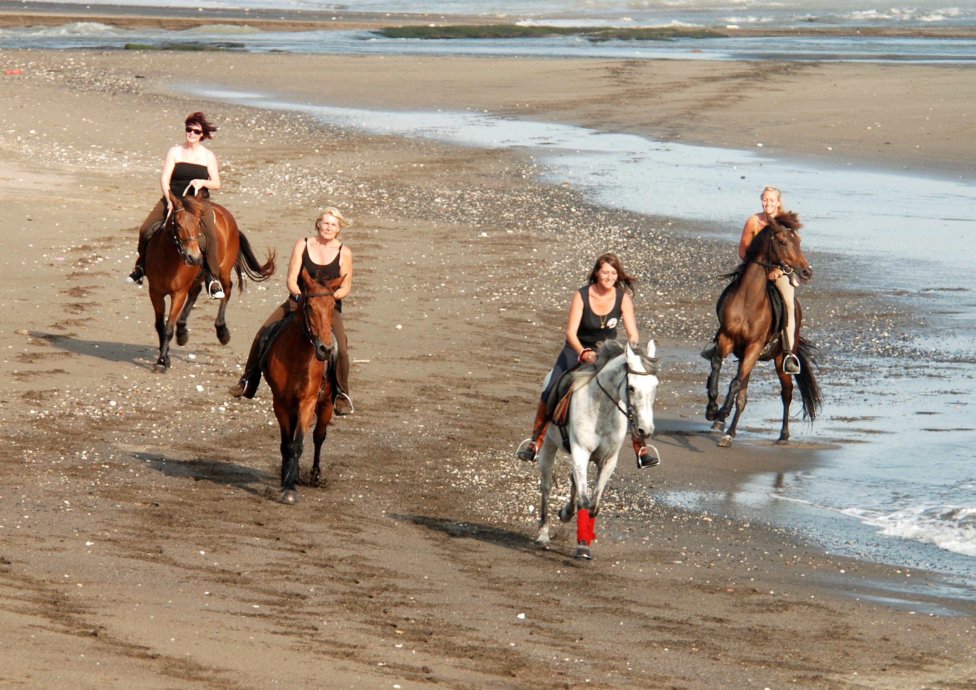 Bali Horse Adventure