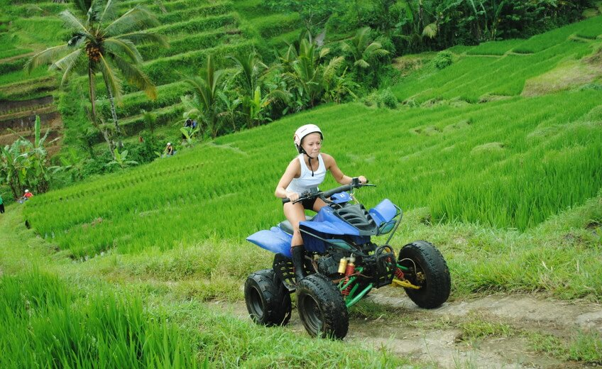 Rice-fields Quad Tour, Farmer Work Discover and Butterfly Park Visit (Single Quad Tour)
