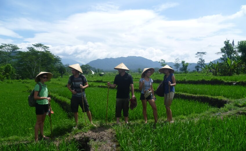 1 Day Discovery of the Balinese Daily Life