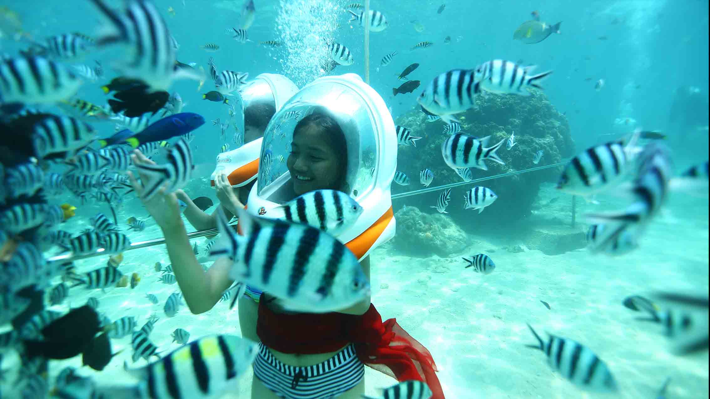 Bali Marine Activities and Tours with Hotel Pickup