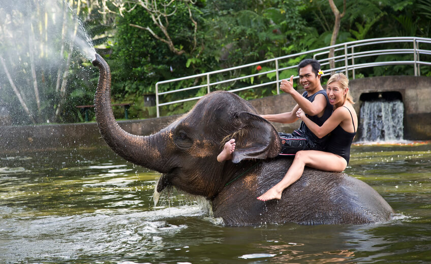 Bath and Breakfast with Elephants & White Water Rafting