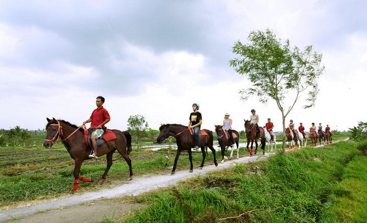 Kuda P Stables Bali Horse Riding Experience
